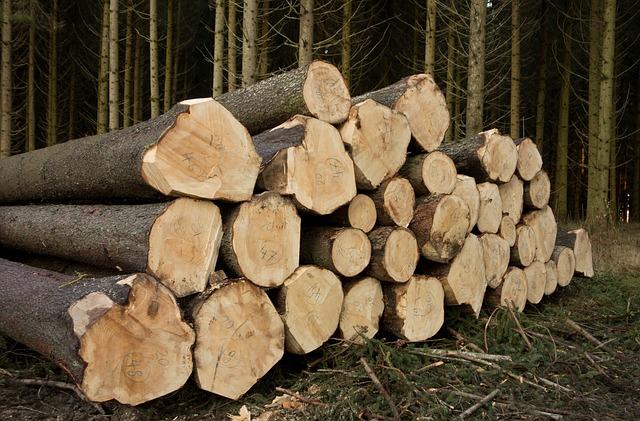 Brennholzbestellung für 2020